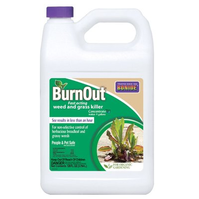 Bonide Bonie Burnout Weed & Grass Killer Concentrate - 1 gallon