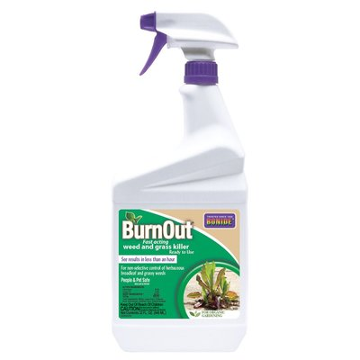 Pest and Disease Burnout II Weed & Grass Killer - Ready to Use - 1 quart
