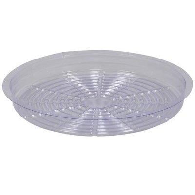 Indoor Gardening Clear Plastic Saucer - 8 inch
