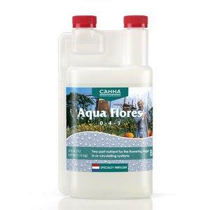 Indoor Gardening Canna Aqua Flores B