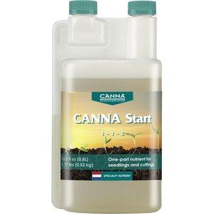 Indoor Gardening Canna Start