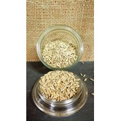 Welter Seed and Honey Co Winter Rye Cover Crop - 56 lb