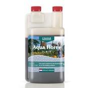 Indoor Gardening Canna Aqua Flores A