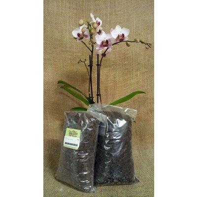 Indoor Plants Besgrow Orchiata Orchid Bark - Super (18-25mm) - 2L