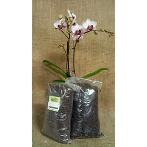 Indoor Plants Besgrow Orchiata Orchid Bark -Classic (6-9mm) - 2L