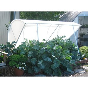 """Outdoor Gardening Solexx 8'x6'x31"""" Deluxe Cold Frame - 5mm (G-80SP)"""