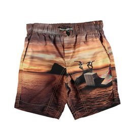 Nario Swim Trunks