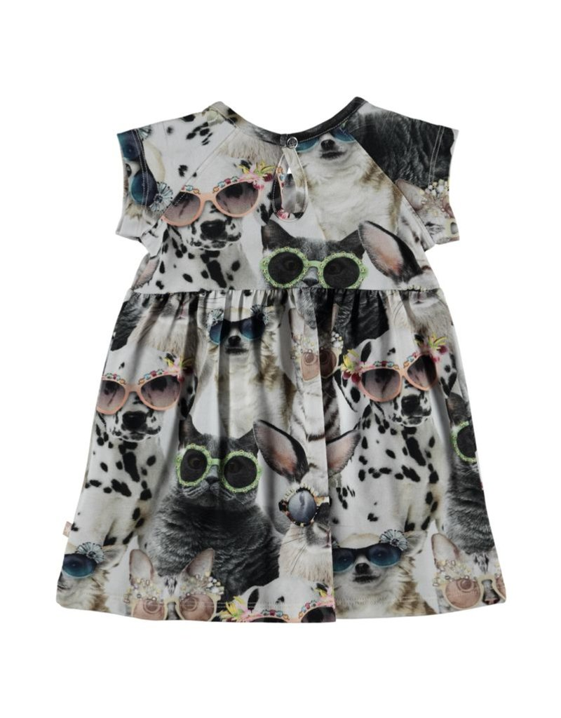 Cille Short Sleeve Print Dress