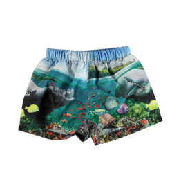 Newton Printed Swim Trunks
