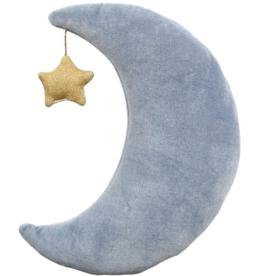 Velvet Moon Cushion