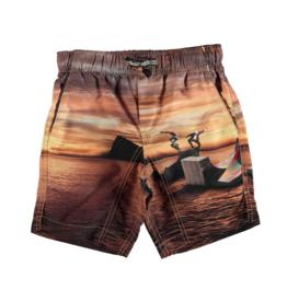 VAULT CLOTHES-Boy Nario Swim Trunks