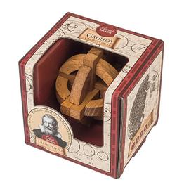 Galileo's Globe