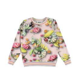 Raewyn Sweater