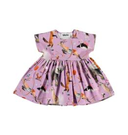 Channi Dress