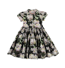 Cybil Dress