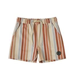 Striped Boardshort