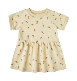 Radish Raglan Baby Dress