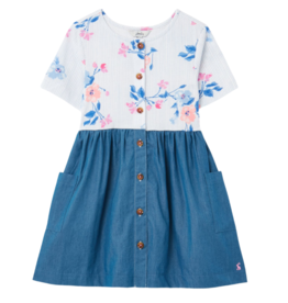 Liddle Dress