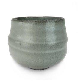 Olivia Tani Cup