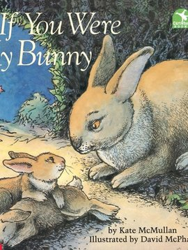 Scholastic If You Were My Bunny