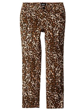 Hudson Burning Brown Pant