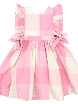 Pink Chicken Sea Pink Gingham Amy Dress