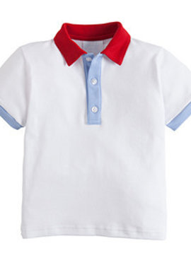 Little English Colorblock Polo