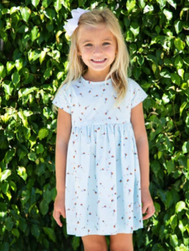 Smiling Button Kites Sunday Dress