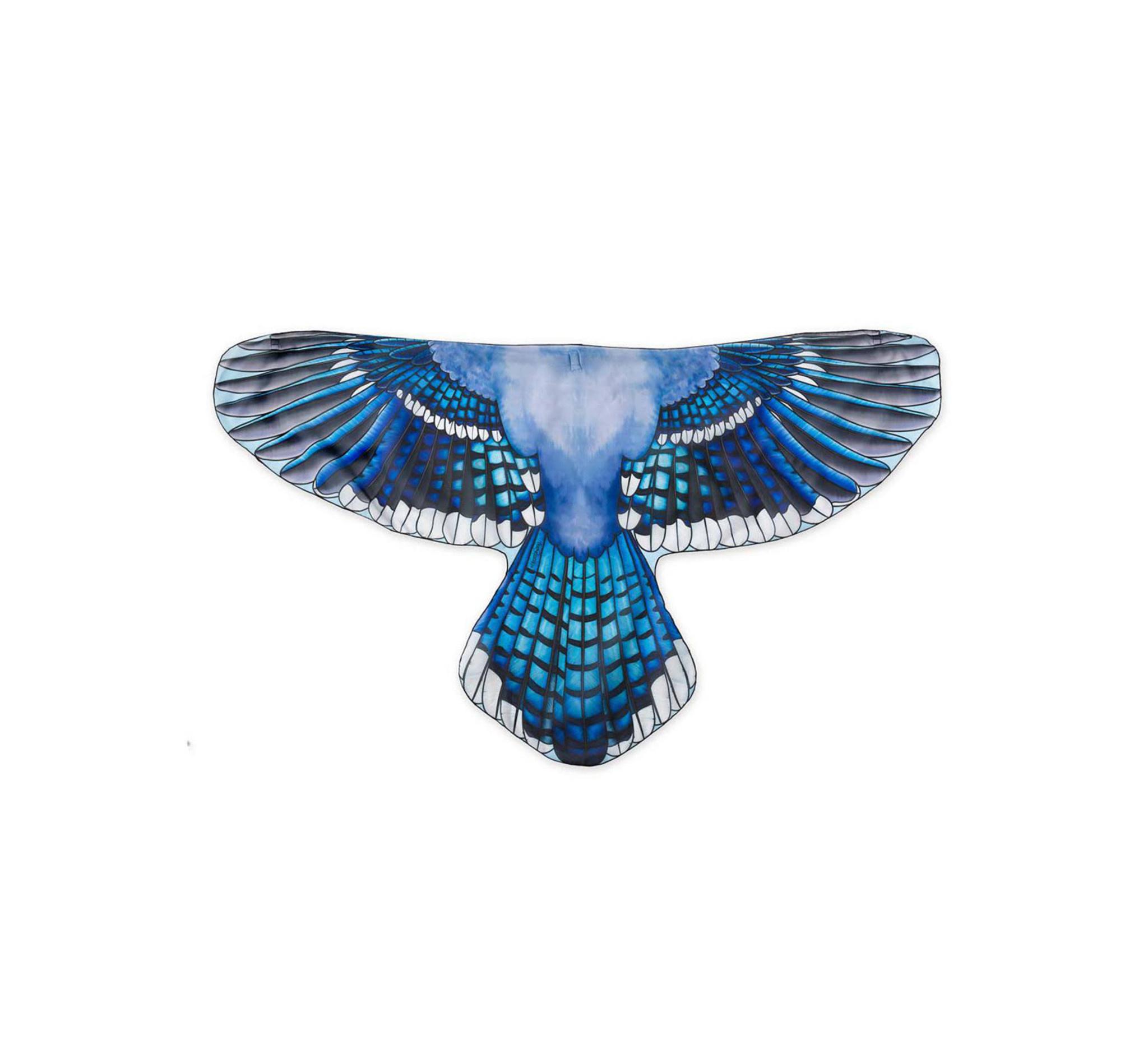 HearthSong Brainy Bird Wings
