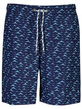 Snapper Rock Blue Swell Boardies