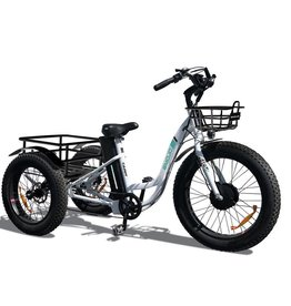 Emojo Caddy  500W 48V Fat Tire Trike