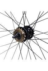 700 Black Fix/Freewheel Wheel Set