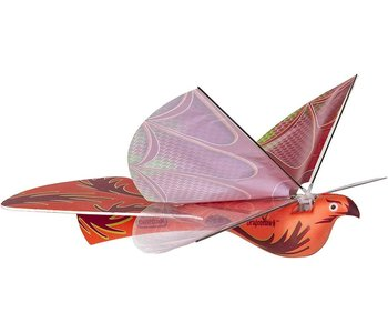 Dragon Hawk