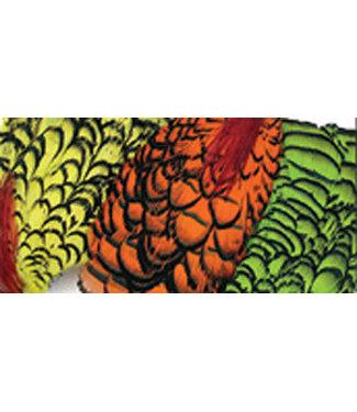 Wapsi Fly, Inc. Lady Amherst Necks,
