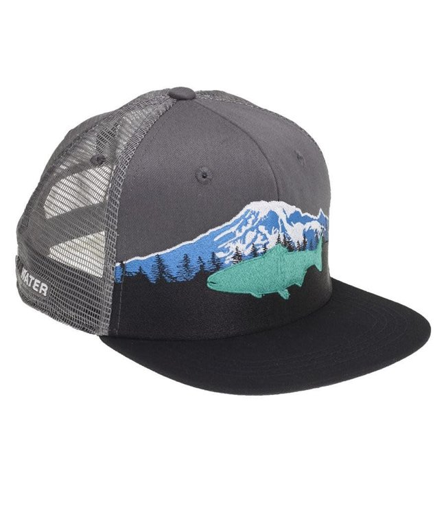Rep Your Water RepYourWater Mount Rainier Hat