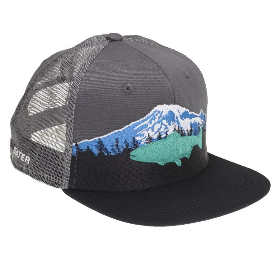 Rep Your Water RepYourWater Mount Rainier Hat