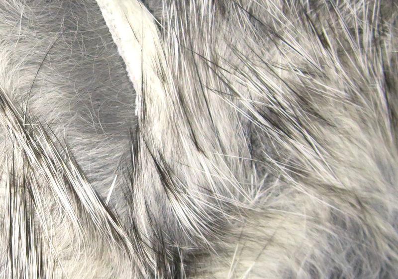 Hareline Dubbin Rabbit Strips,