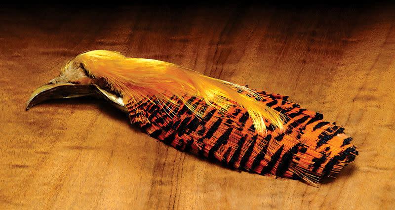 Hareline Dubbin Golden Pheasant Complete Tippet