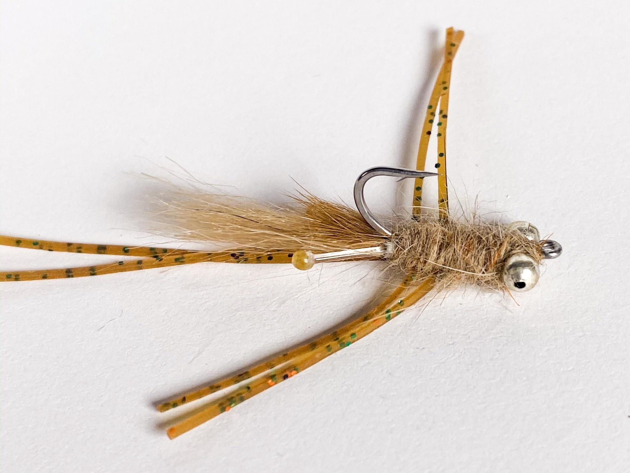 Catch Flies Mantis Shrimp