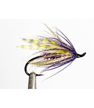 Aqua Flies Hartwick's Purple Hilton size 6