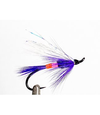 Aqua Flies Freight Train Purple/Pink/Orange size