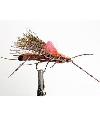 Gig Harbor Fly Shop Morrish's Fluttering Stonefly - Salmonfly size 4