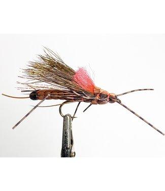 Gig Harbor Fly Shop Morrish's Fluttering Stonefly - Salmonfly size 4