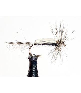 Solitude Flies Chironomid Adult size 14