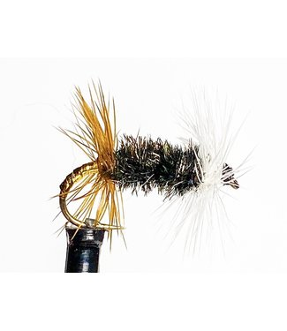 Rio Products Renegade size 16