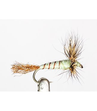 Catch Flies Sparkle Dun Green Drake size 12