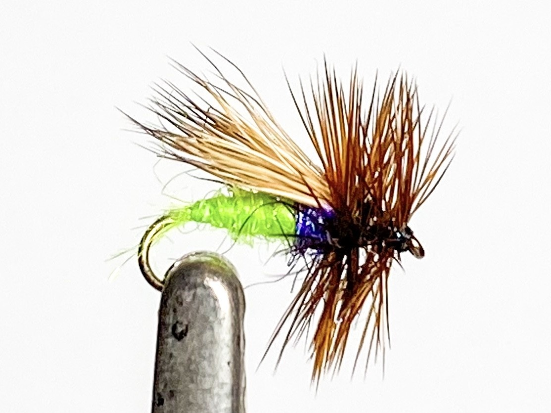 Catch Flies Egg Layer Caddis size 16