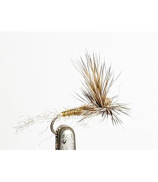 Catch Flies EC Caddis Tan