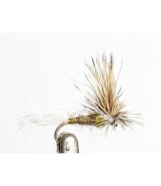Catch Flies EC Caddis Olive