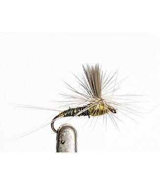 Catch Flies Silhouette Dun Baetis